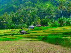 jenis jenis hak atas tanah untuk proyek property