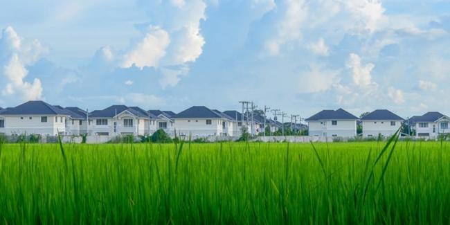 siklus bisnis properti indonesia