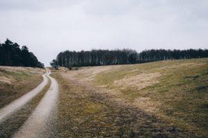 mengecek legalitas tanah