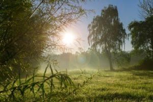 Panduan Cara Menjual Tanah Warisan Asrimancom
